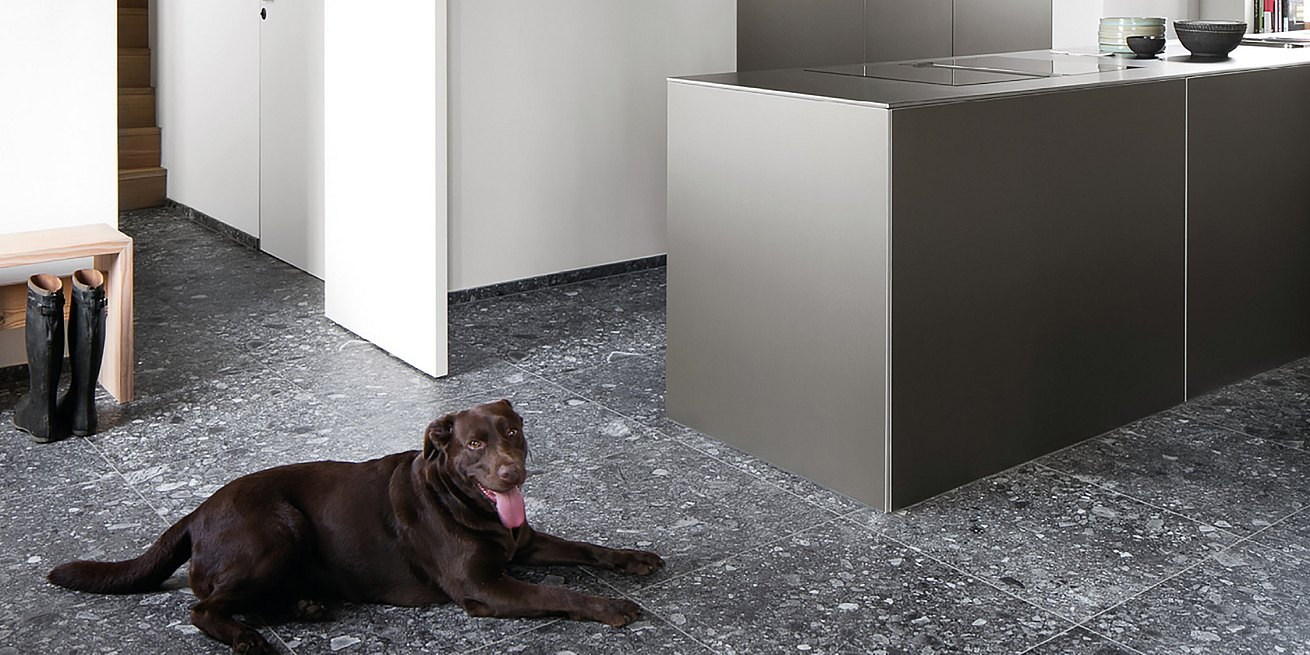 Dog resting next to a bulthaup kitchen