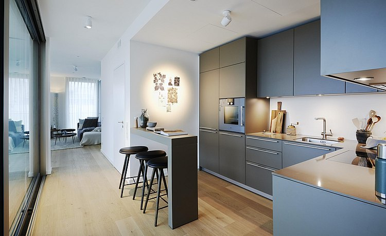 Dark b3 wall line with bar element brings a modern, urban flair to the apartment